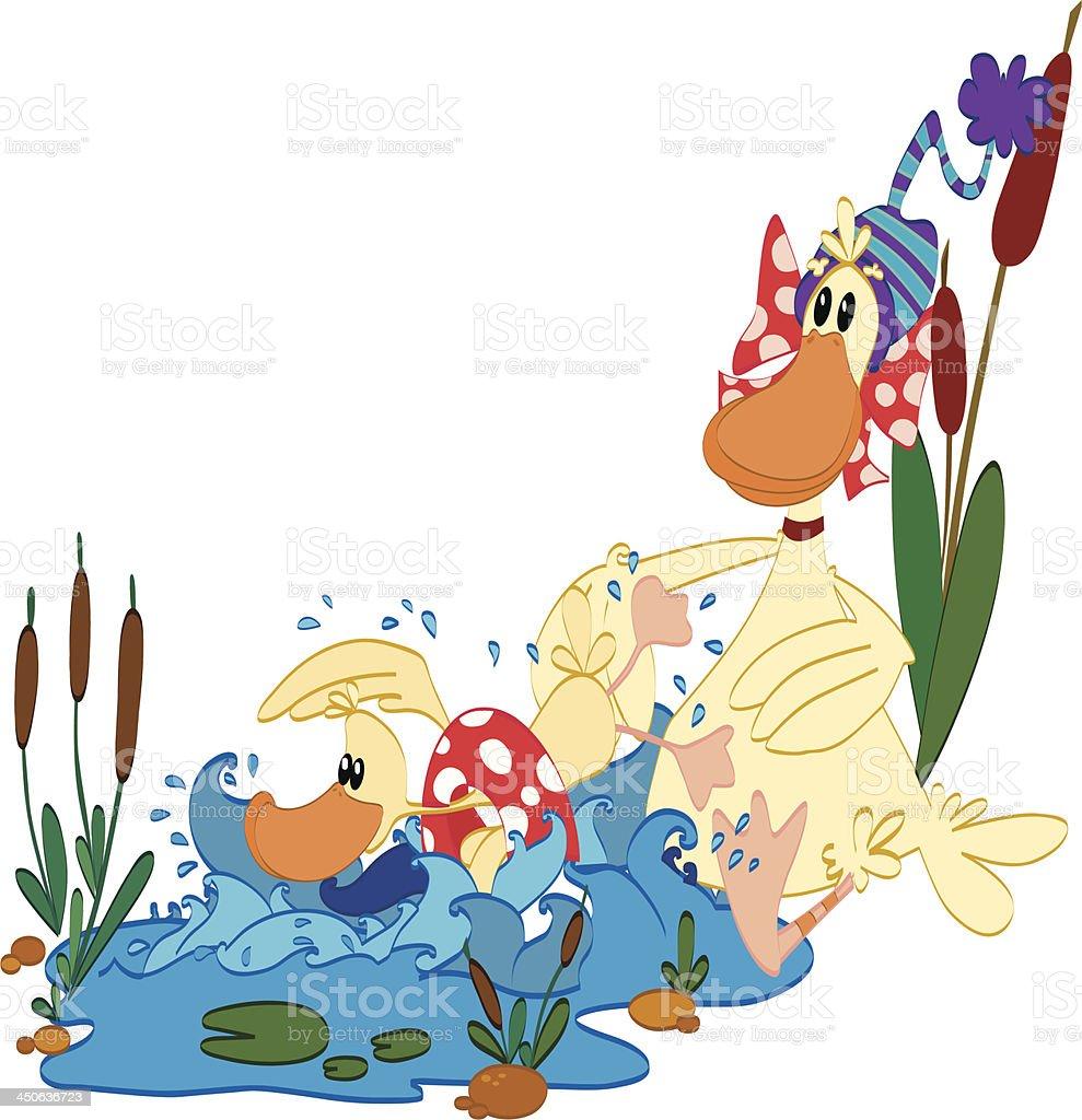 Ducks royalty-free stock vector art