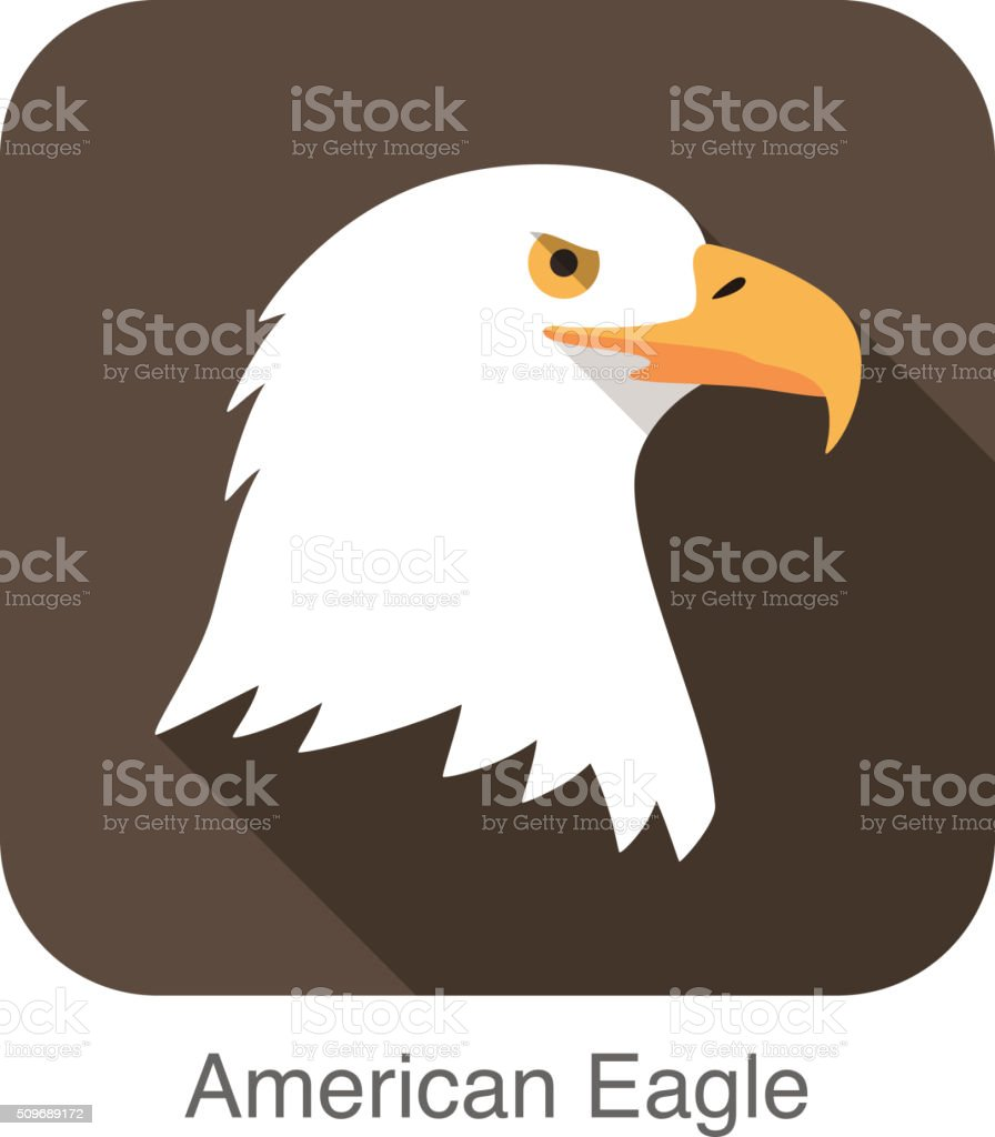 eagle bear face flat icon design. Animal icons series. vector art illustration