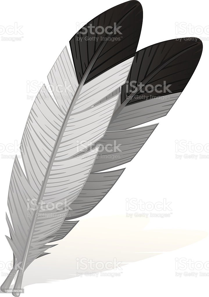 Eagle Feathers royalty-free stock vector art