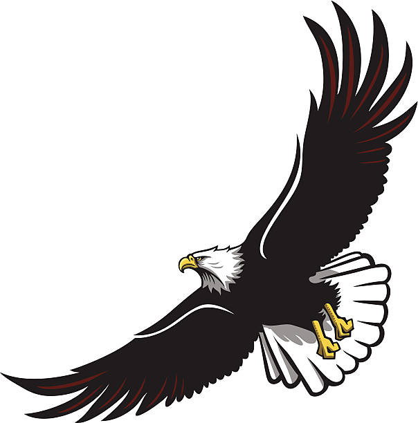 clip art soaring eagle - photo #18