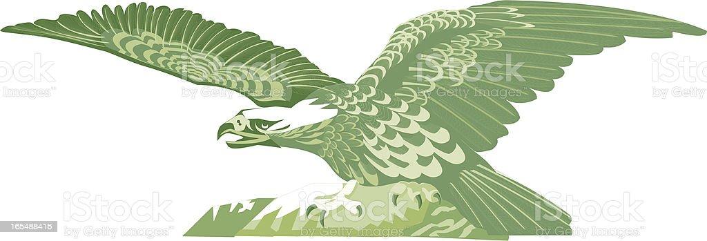 Eagle royalty-free stock vector art