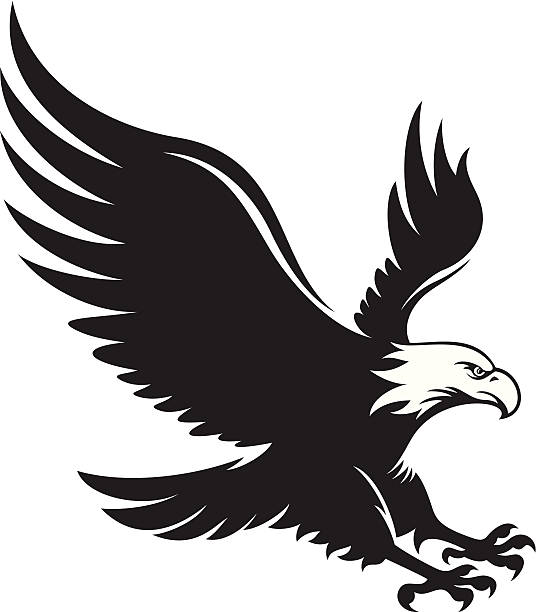 eagle bird clip art - photo #18