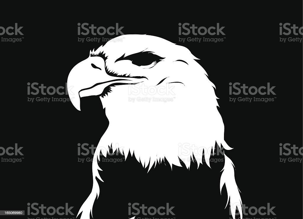 Eagles eye vector art illustration