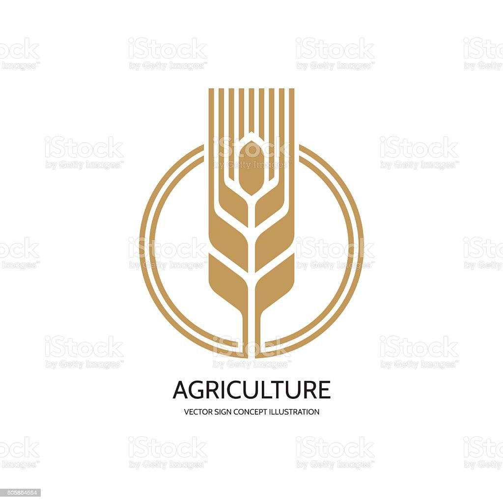 Ear of wheat - vector sign concept illustration vector art illustration
