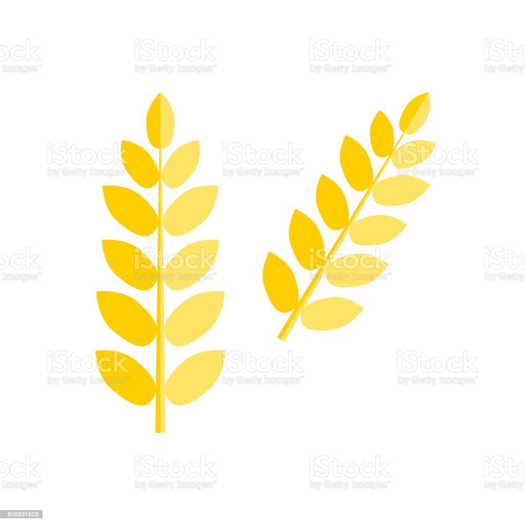 Ear wheat isolated vector. vector art illustration