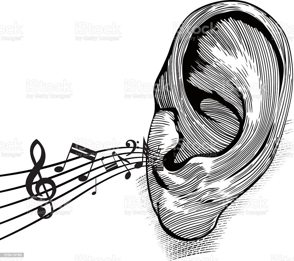 Ear with music notes vector art illustration
