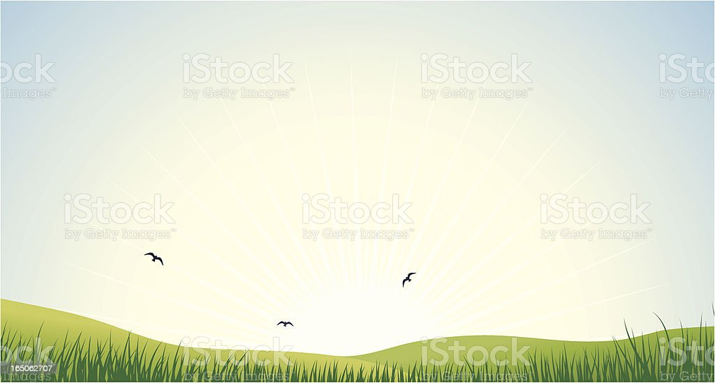 Early morning royalty-free stock vector art