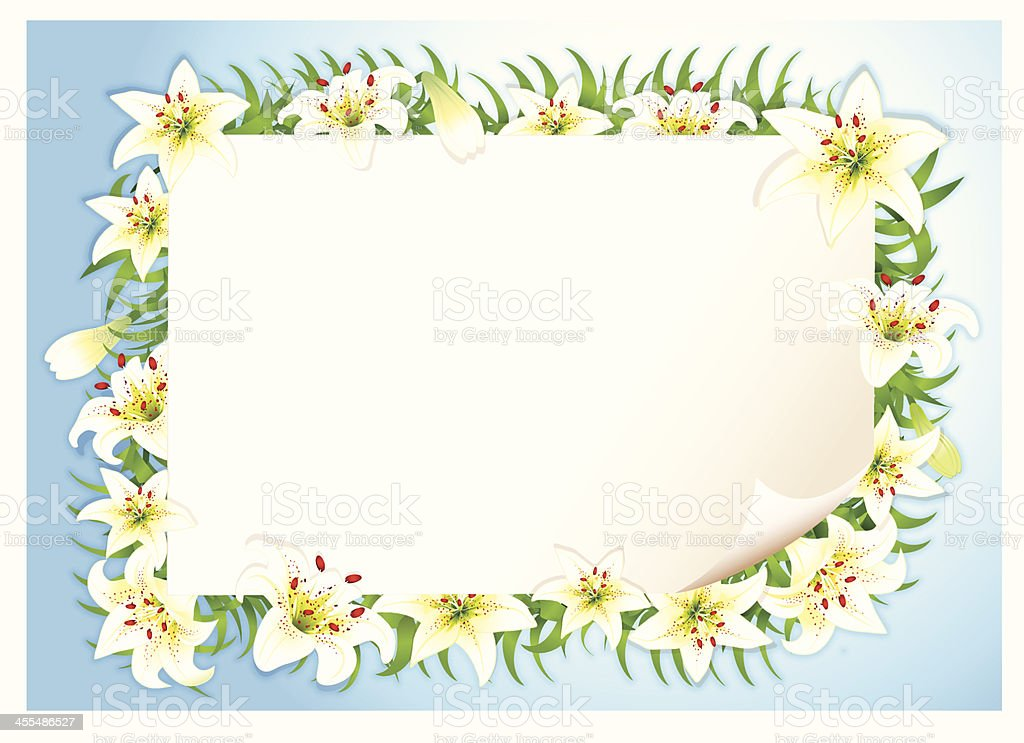 Easter Lily stock vector art 455486527   iStock
