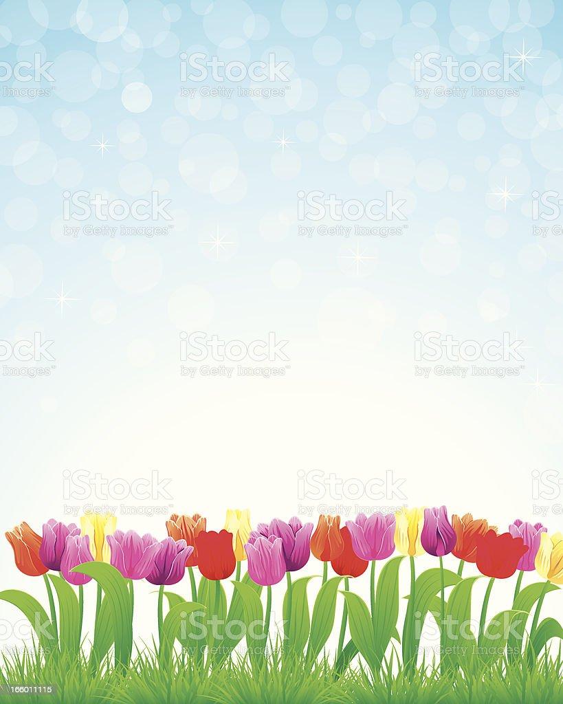 Easter Tulip royalty-free stock vector art
