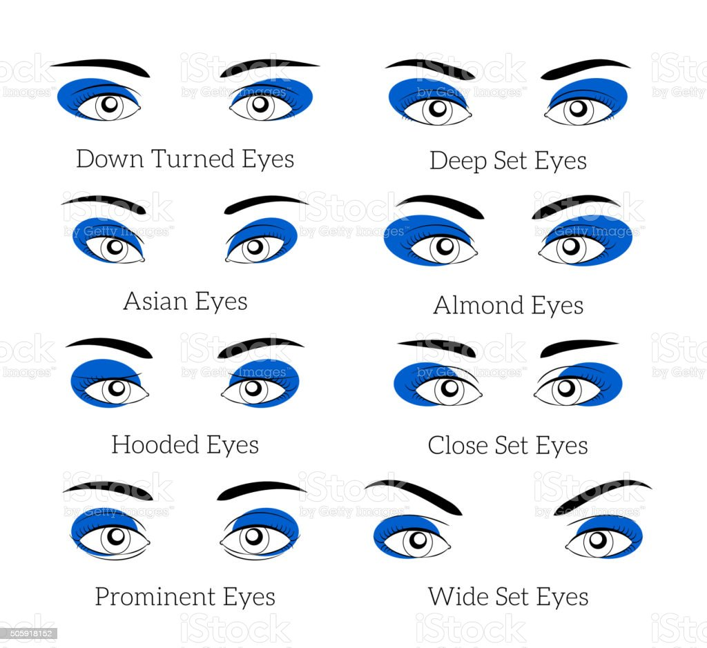 Easy makeup tips for the eyes vector art illustration