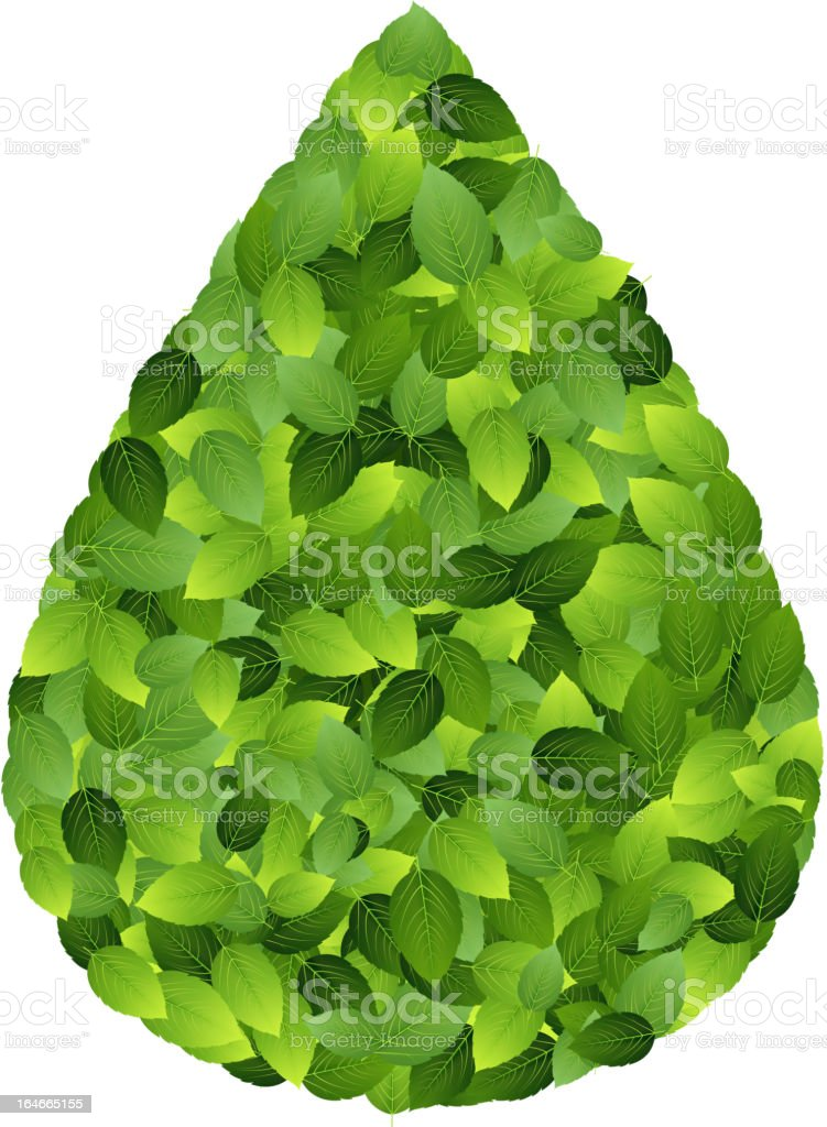 eco friendly label from green leaves. Vector illustration. royalty-free stock vector art