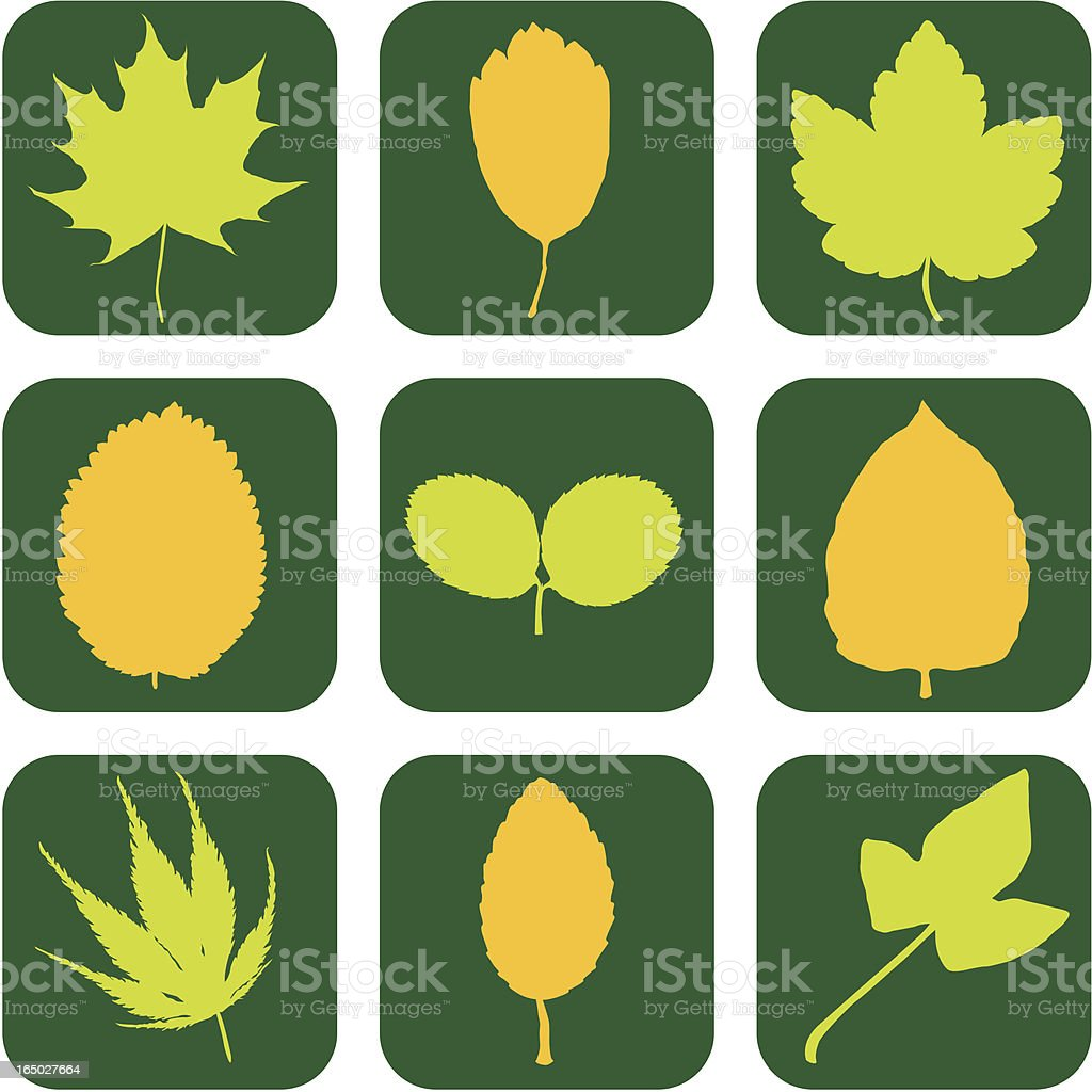 Eco Friendly Leaf Icons ( Vector ) royalty-free stock vector art