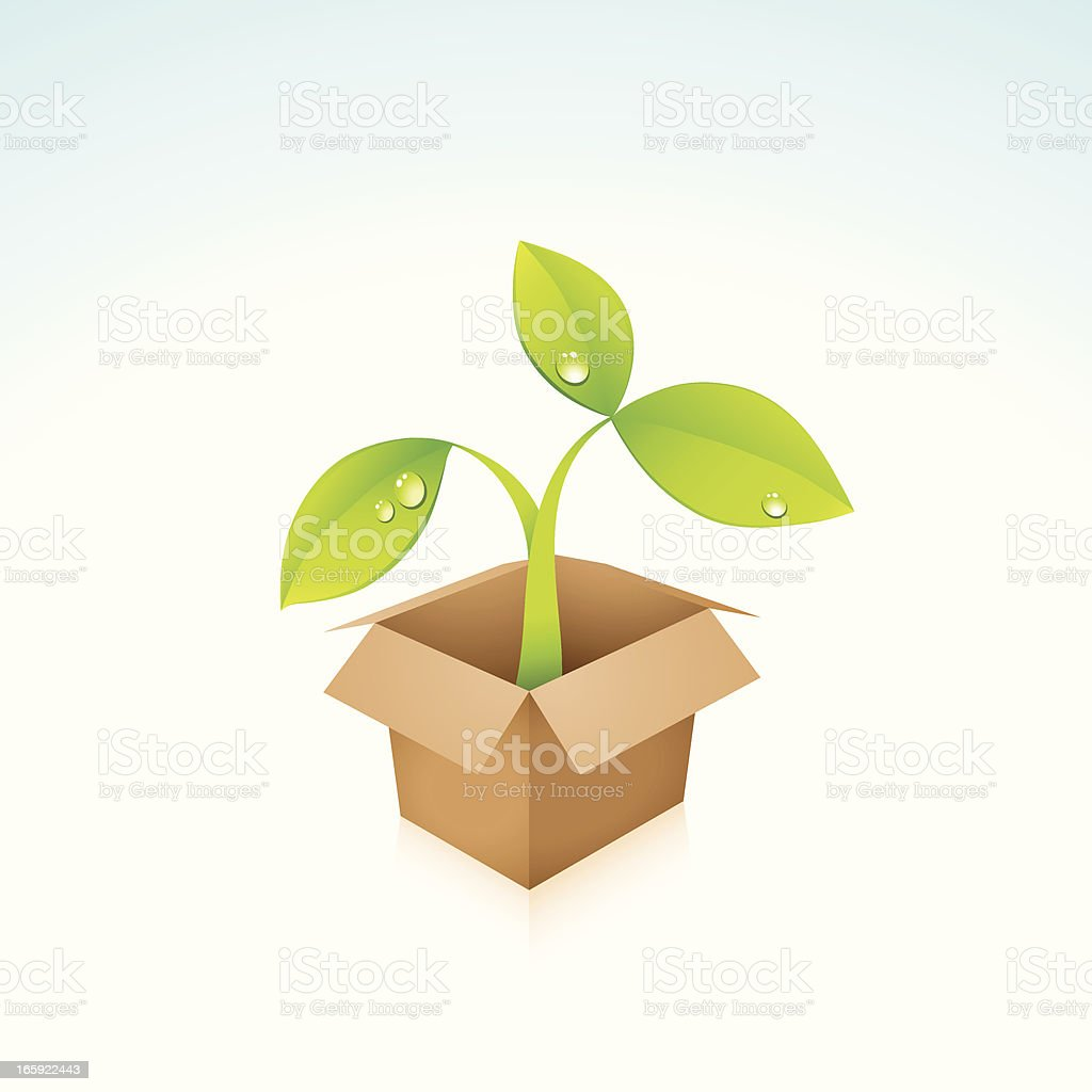 Eco Friendly Sprout Out Of Cardboard Box royalty-free stock vector art