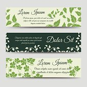 Eco horizontal banners with green branches