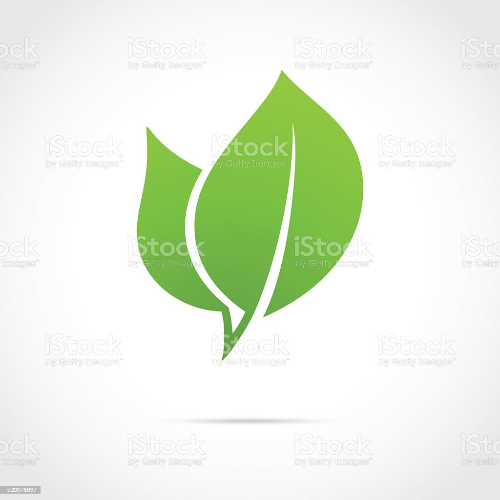 Eco icon green leaf vector art illustration