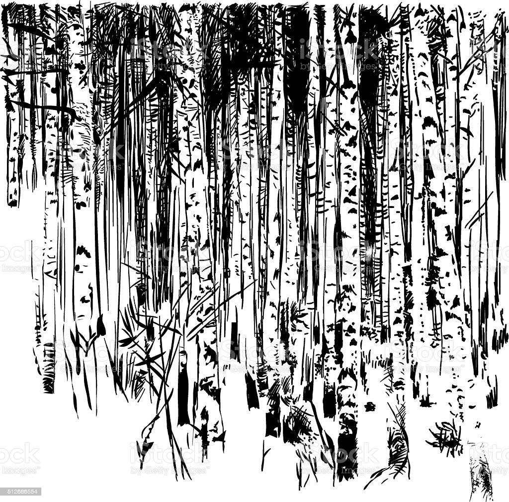 Ecological natural subject. Birchwood vector art illustration