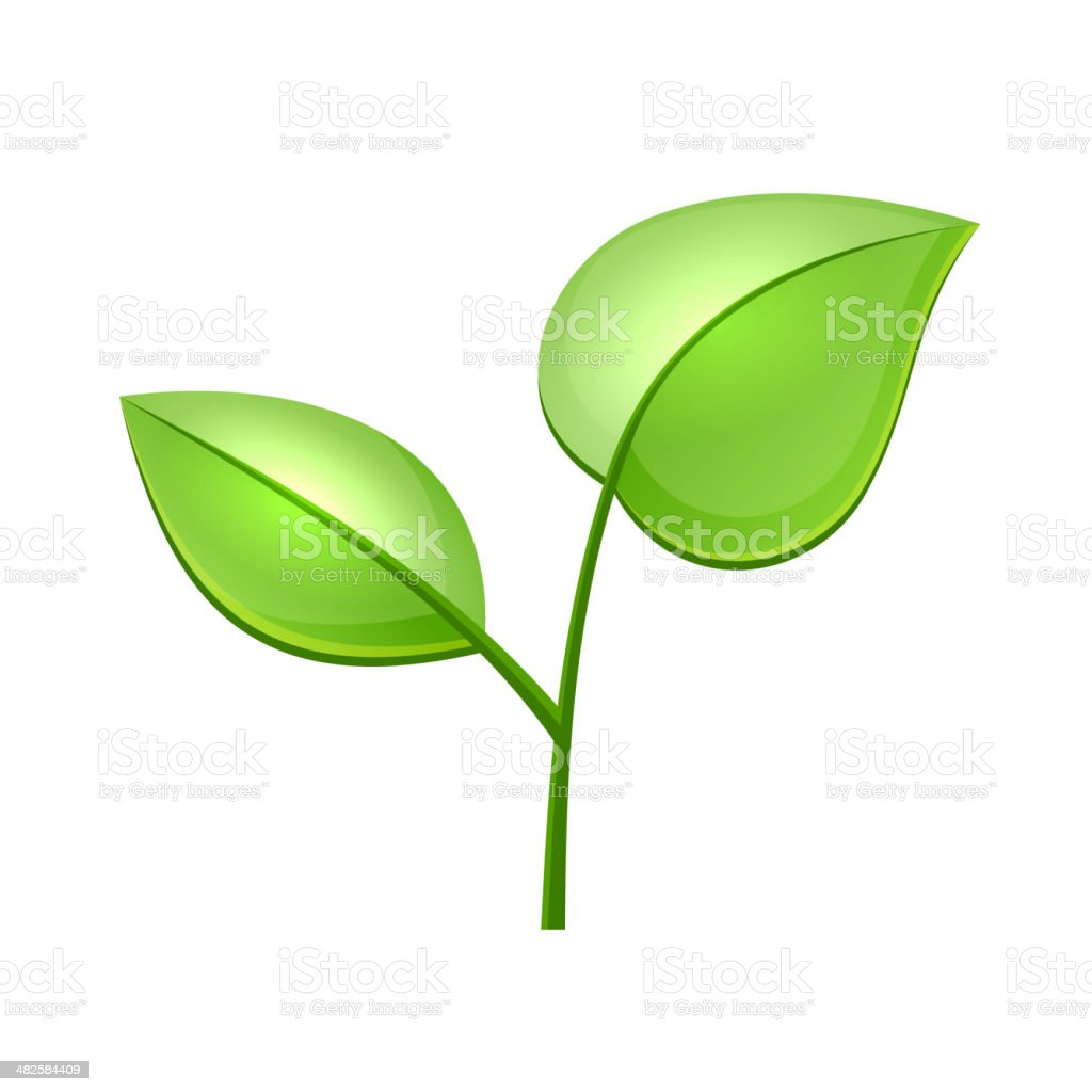Ecology Concept Icon with Glossy Green Leaves Vector royalty-free stock vector art