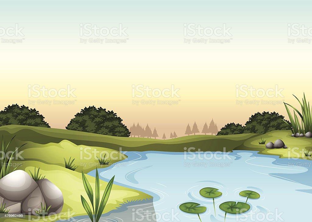 ecosytem vector art illustration
