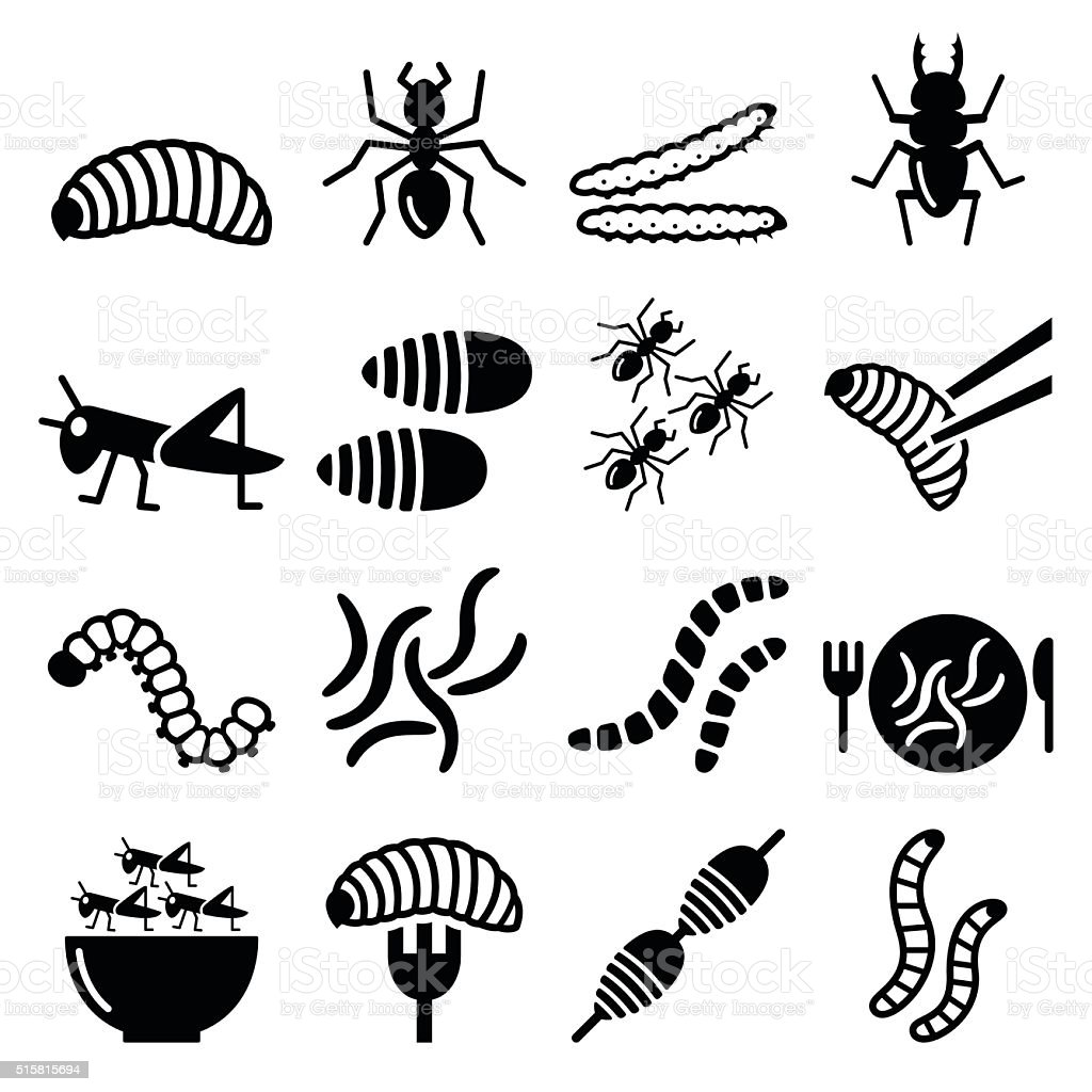 Edible worms and insects icons - alternative source on protein vector art illustration
