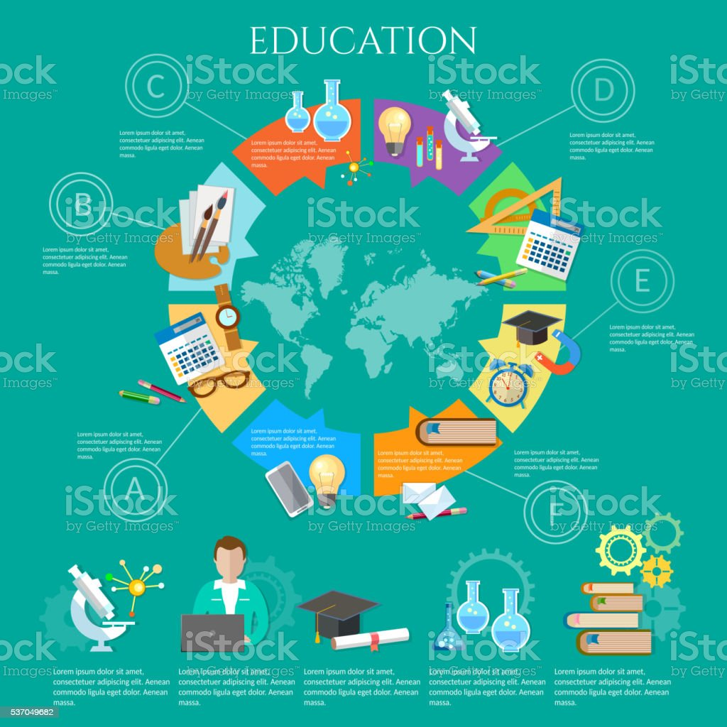 Education infographic diagram knowledge vector art illustration