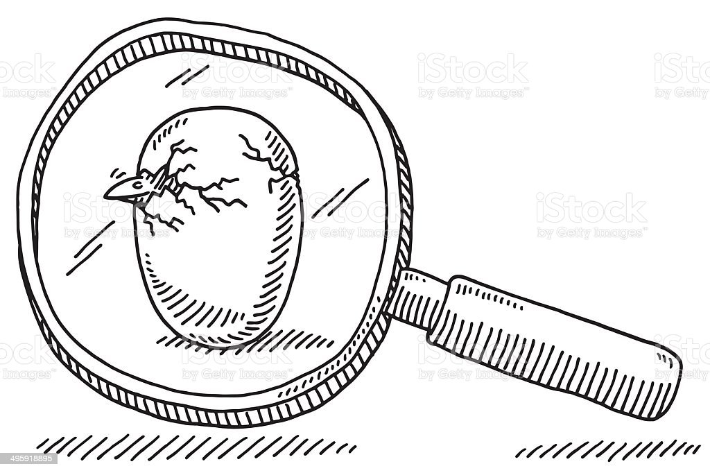 Egg Bird Birth Loupe Drawing vector art illustration