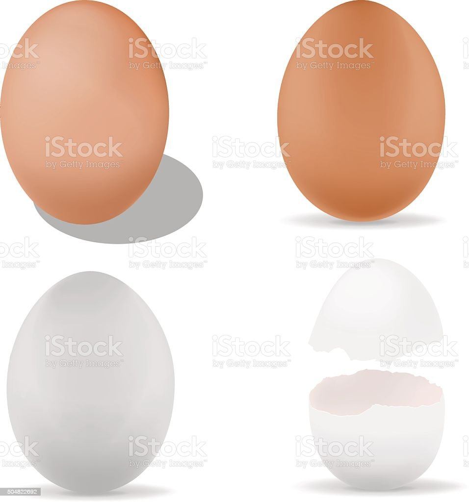 Egg vector art illustration