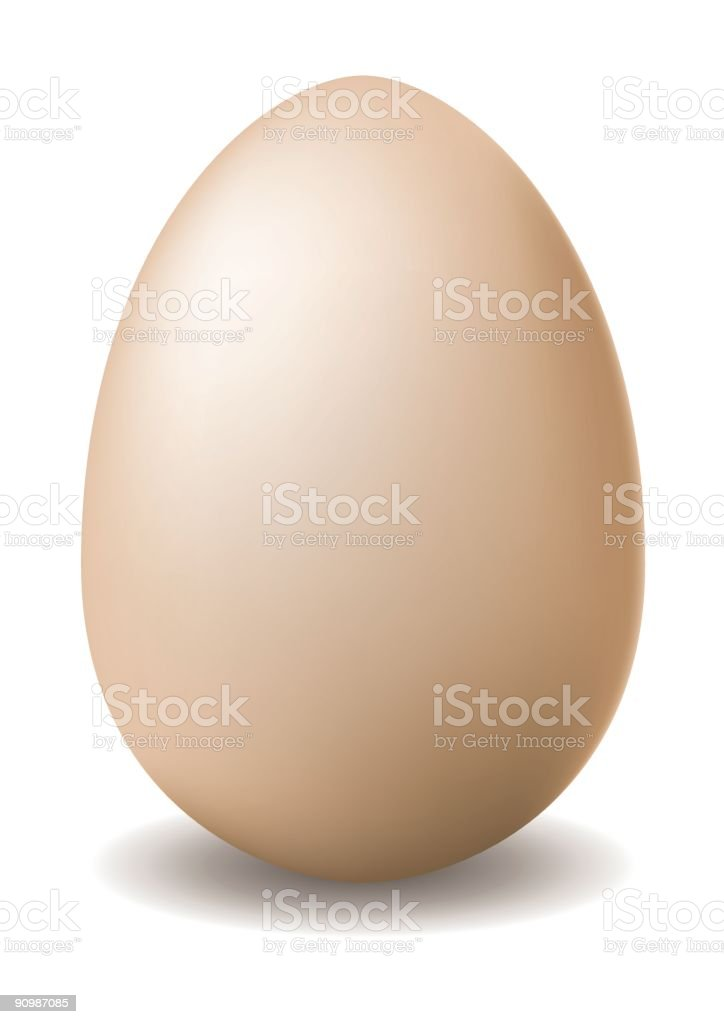 egg royalty-free stock vector art