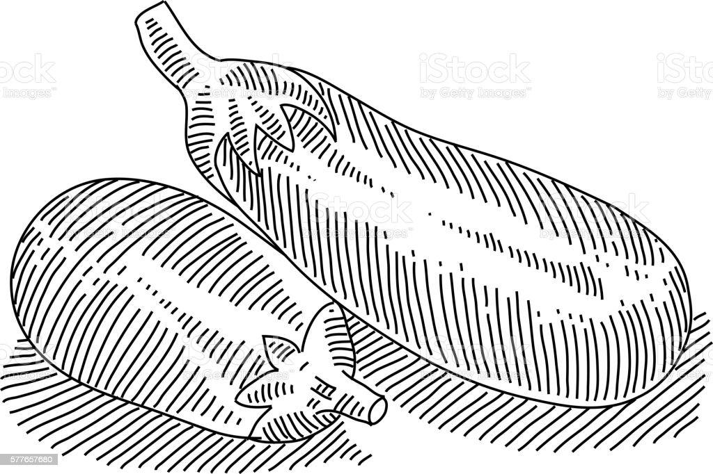Eggplant Drawing vector art illustration