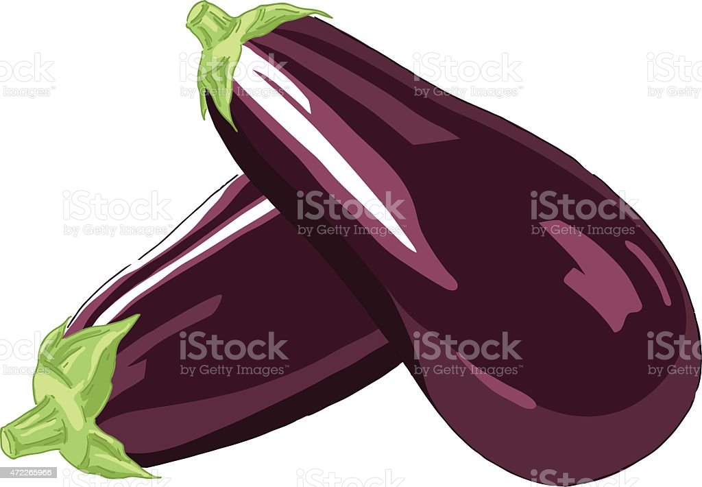 Eggplant vector art illustration