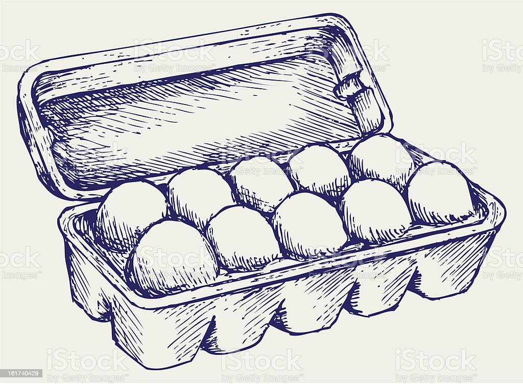 Eggs in a carton package vector art illustration