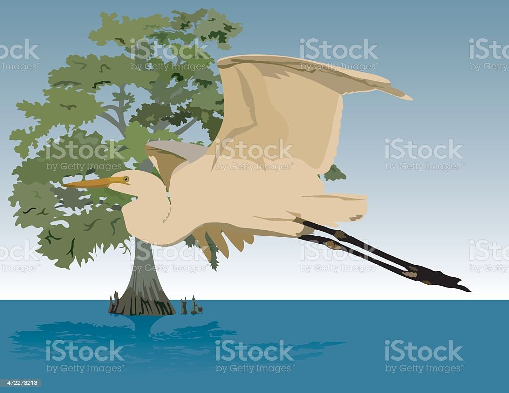 Egret and Cypress royalty-free stock vector art