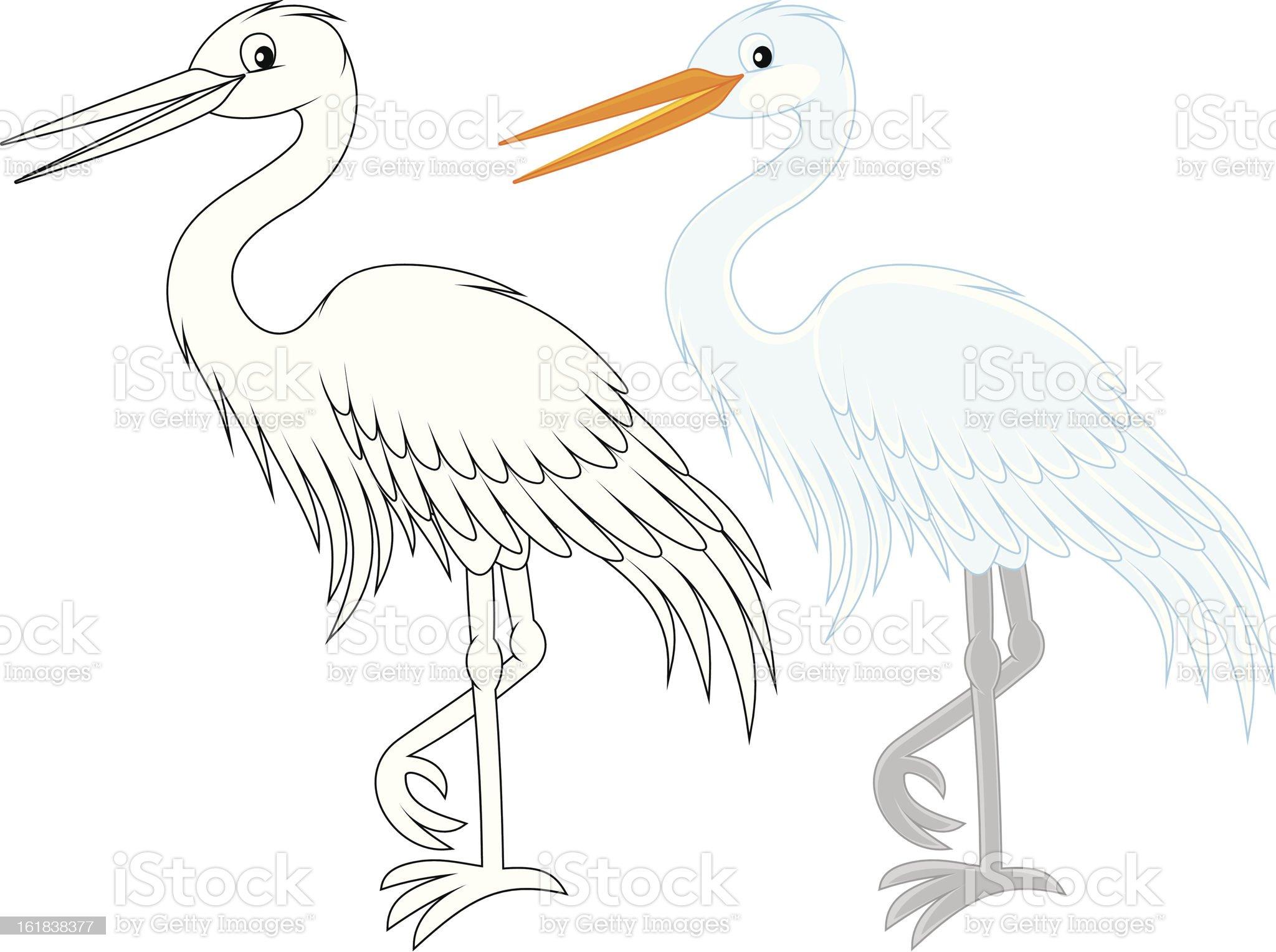 Egret royalty-free stock vector art