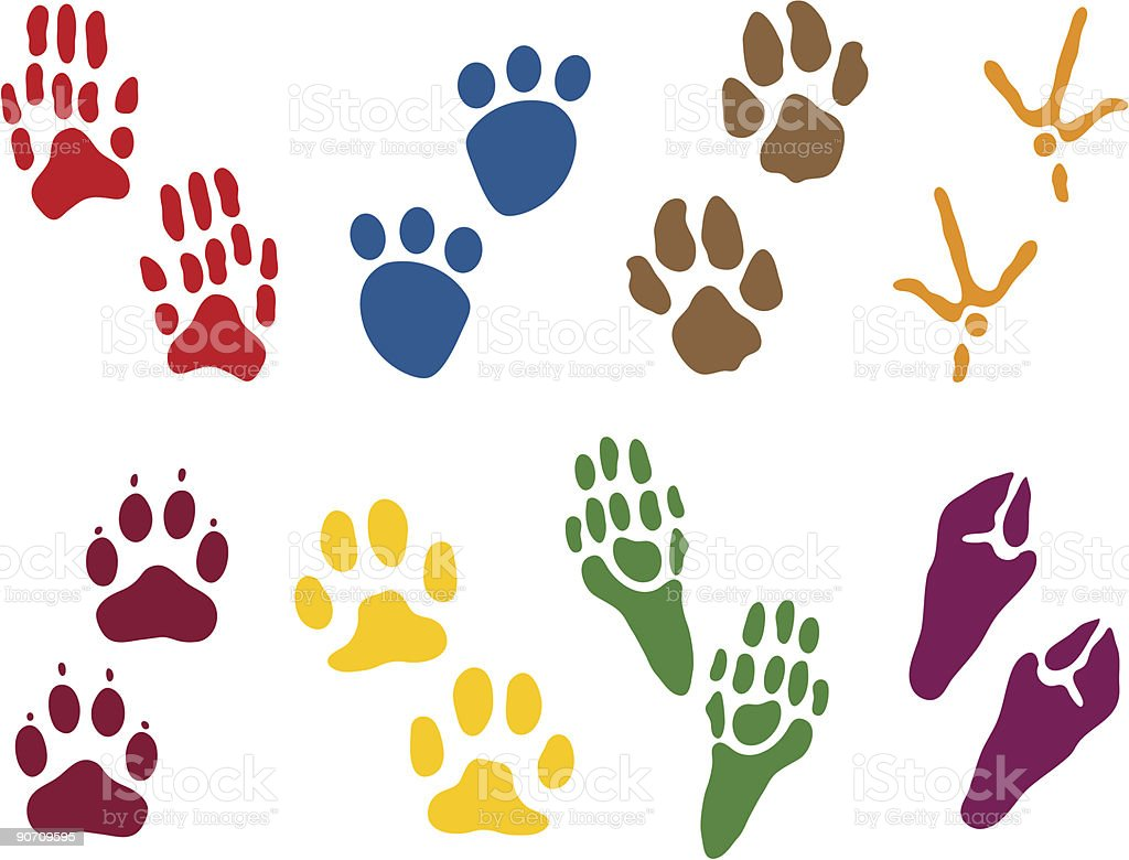 Eight sets of animal tracks royalty-free stock vector art