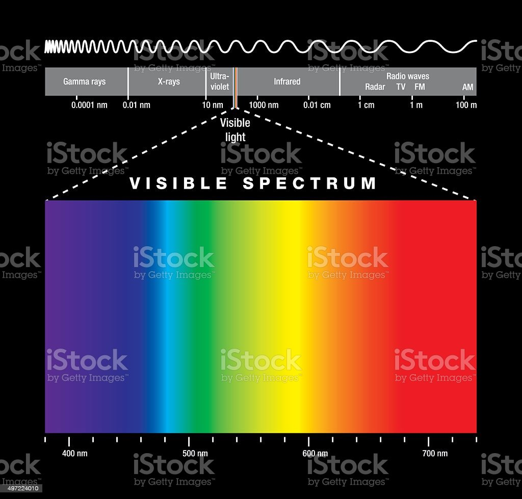 Electromagnetic Spectrum And Visible Light vector art illustration