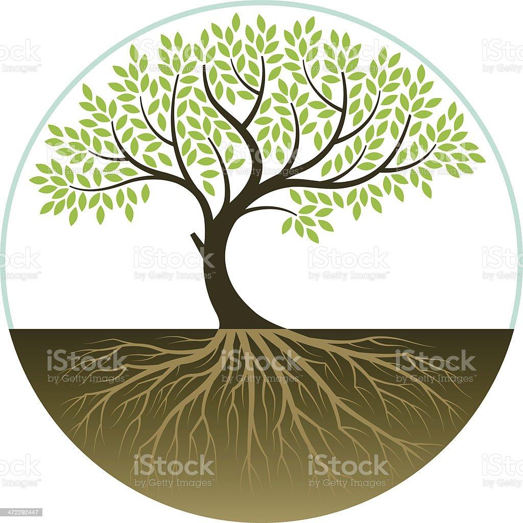 Elegant bent tree vector art illustration