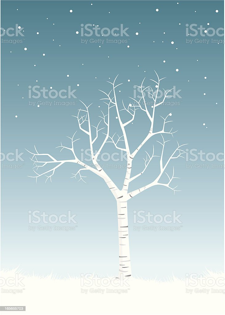 Elegant Birch Winter royalty-free stock vector art