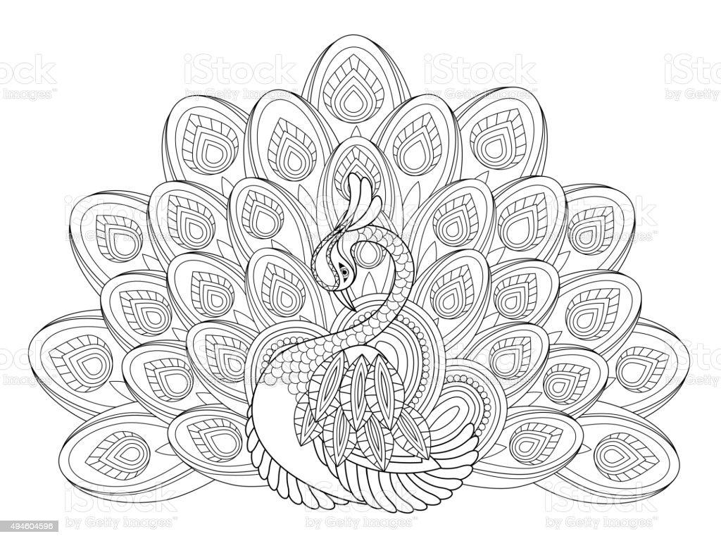 elegant peacock vector art illustration