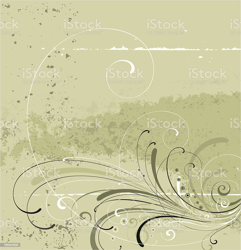 Elegant Scroll Panel vector art illustration