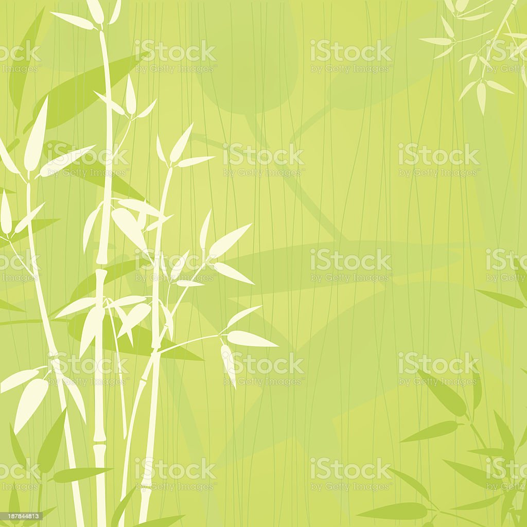 Elegent bamboo background vector art illustration