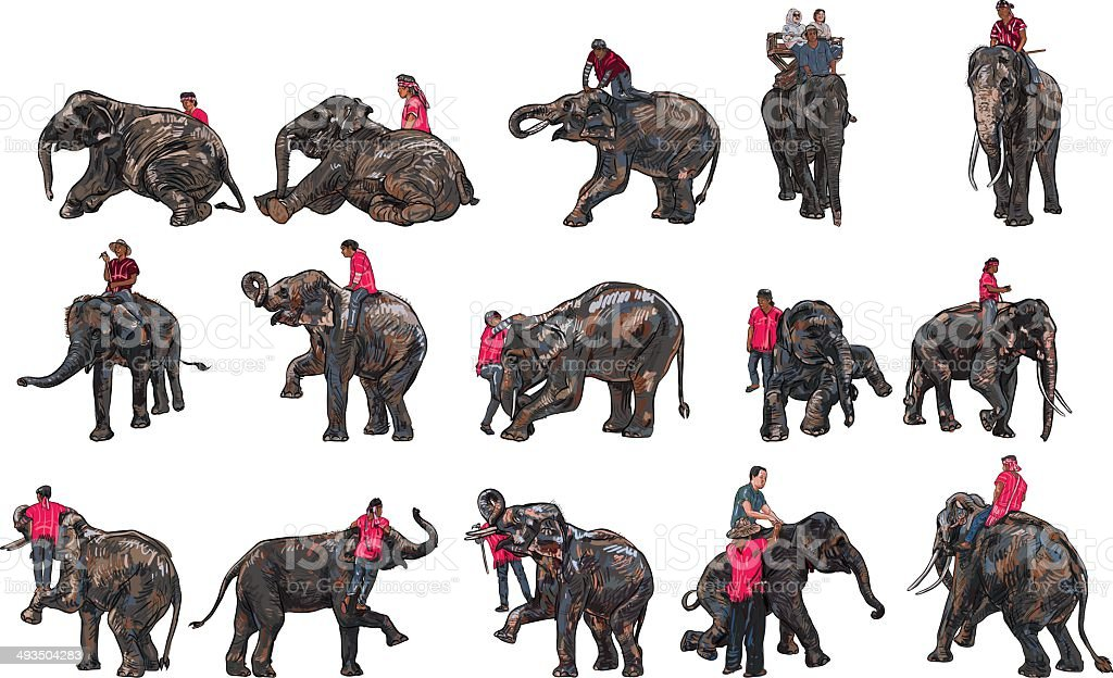 Elephant show and training with mahout vector art illustration
