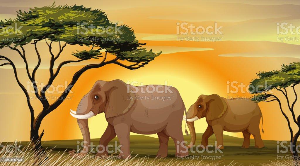 Elephant under a tree royalty-free stock vector art