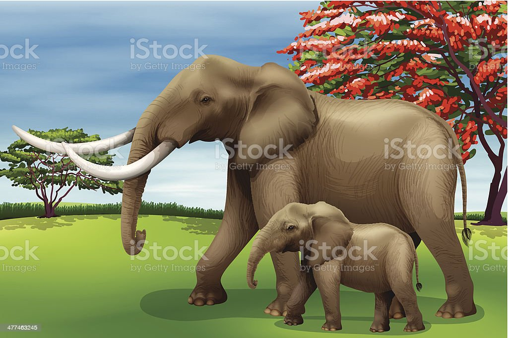 Elephant royalty-free stock vector art
