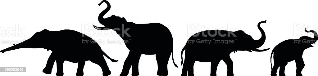 Elephants Silhouette vector art illustration