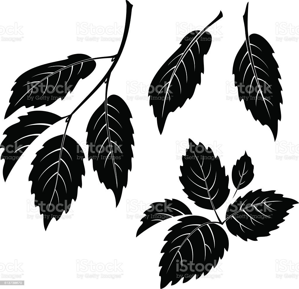 Elm Leaves, Pictogram Set vector art illustration