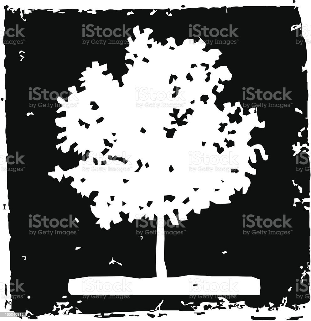 Elm tree vector art illustration