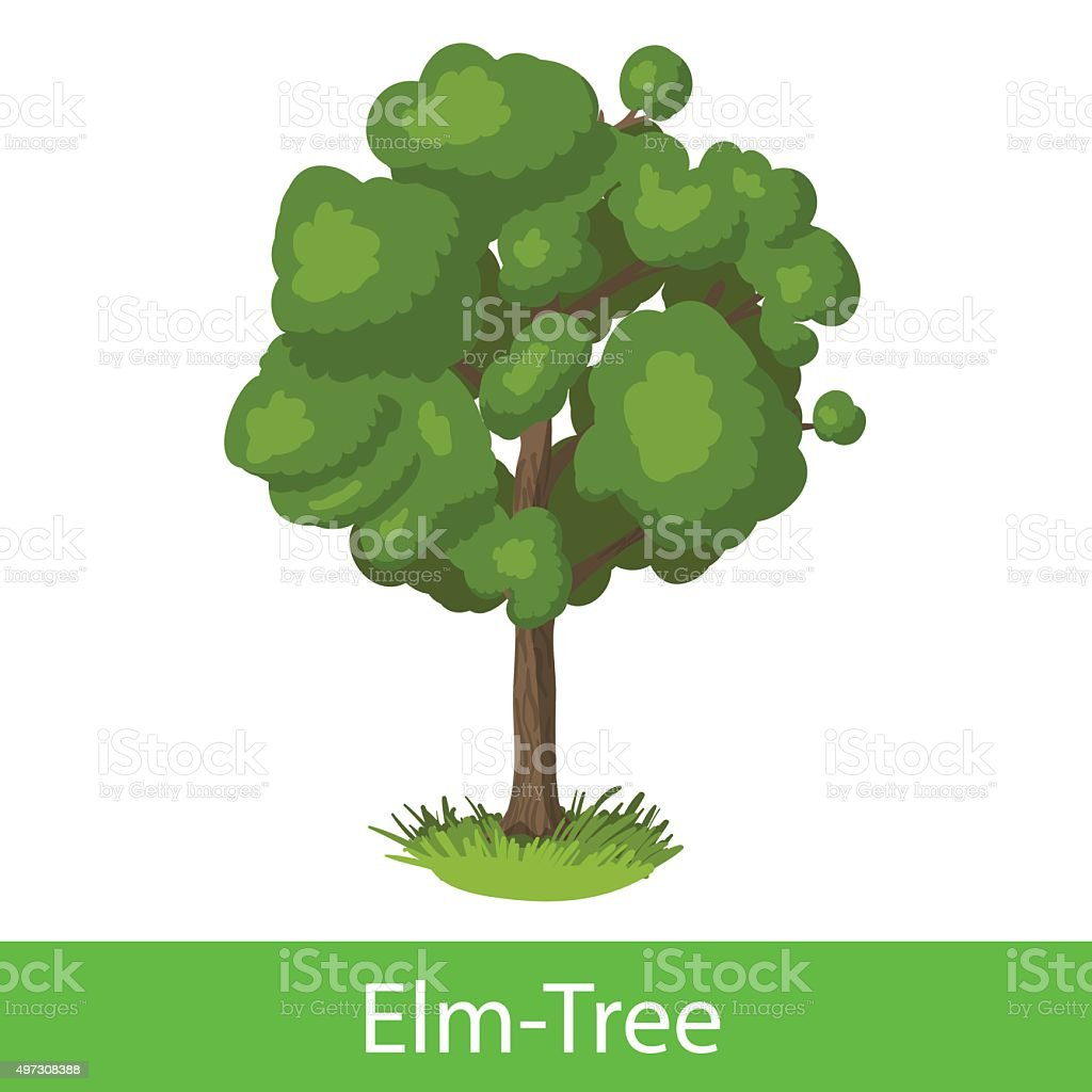 Elm-Tree cartoon icon vector art illustration