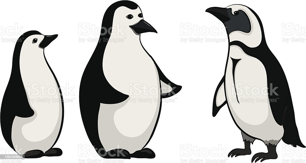 Emperor penguins royalty-free stock vector art