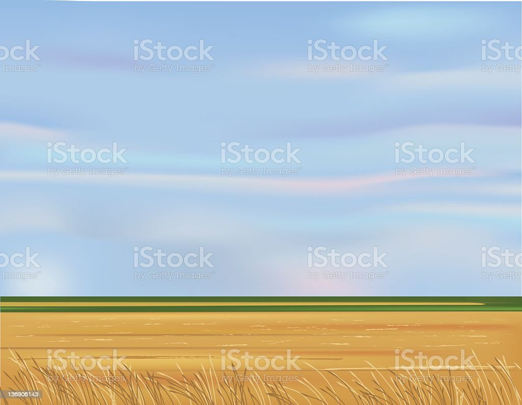 Empty Field and Blue Sky royalty-free stock photo