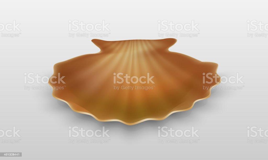 Empty shell royalty-free stock vector art