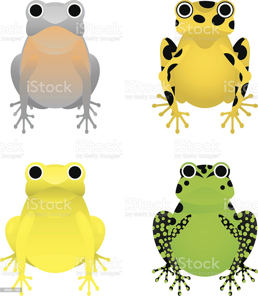 Endangered Frogs vector art illustration